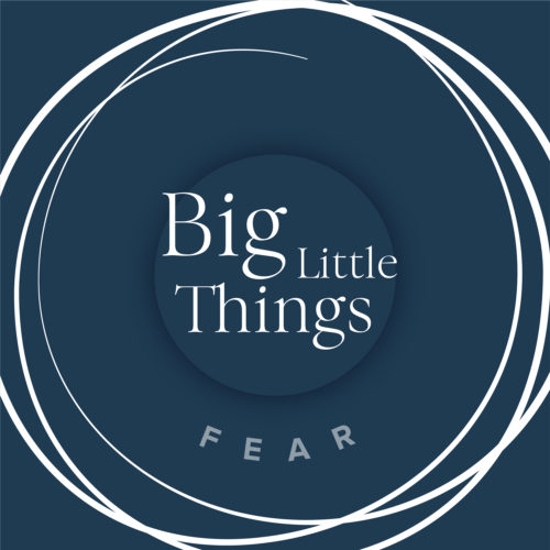 Big Little Things - Fear