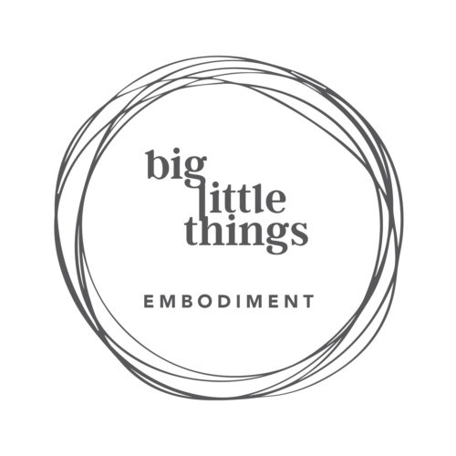 Big Little Things - Embodiment