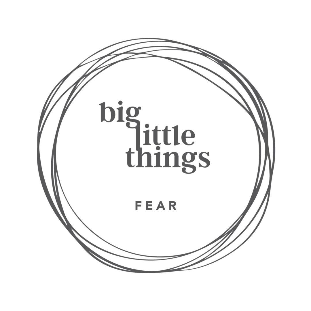 Big Little Things - Fear