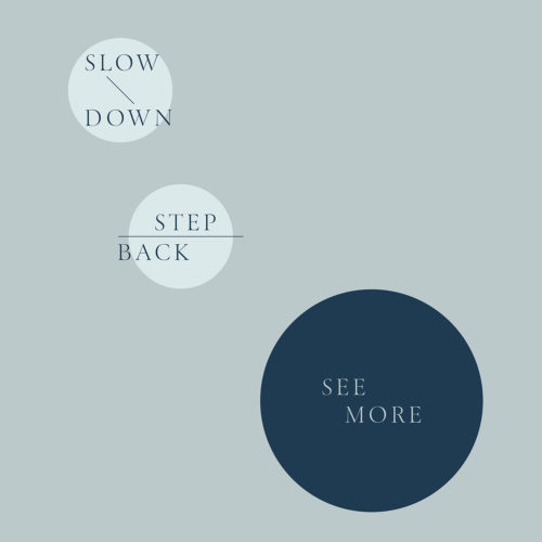 Slow Down, Step Back, See More